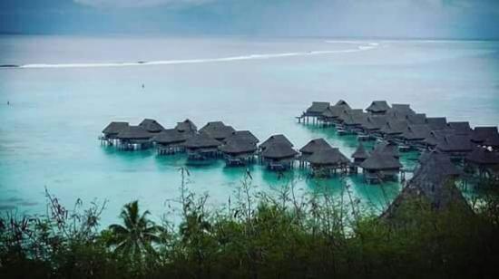 Sofitel Moorea Ia Ora Beach Resort Picture Of Sofitel