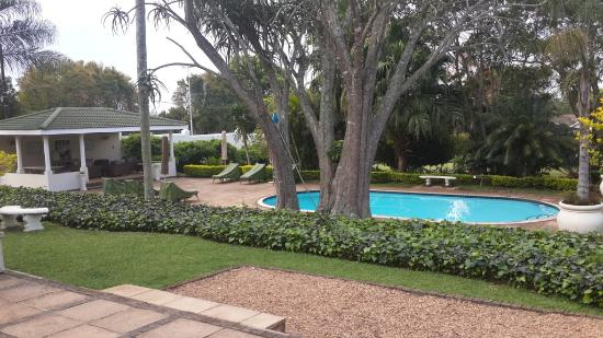 Valley Lodge: The pool
