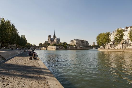 les quais de seine 5 minutes pied de l 39 h tel photo de timhotel jardin des plantes paris. Black Bedroom Furniture Sets. Home Design Ideas