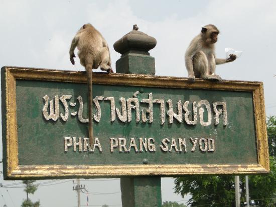 Phra Prang Sam Yot - Picture of Phra Prang Sam Yot, Lop Buri - TripAdvisor