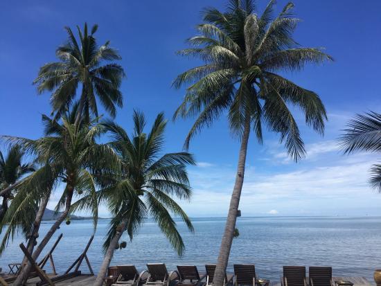 Tango Luxe Beach Villa: photo1.jpg