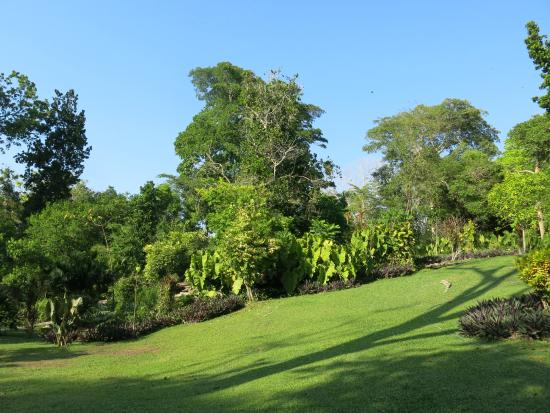Jardín Botánico de Cartagena Guillermo Piñeres: Gardens