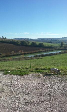 Pozzuolo, Italia: Un paradiso