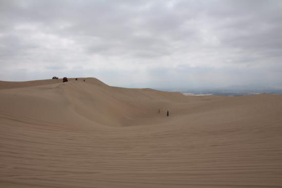 Huacachina Travel  - Day Tour