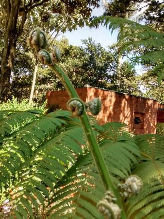 entrada al jardín botánico - Picture of Jardin Botanico de Bogota ...