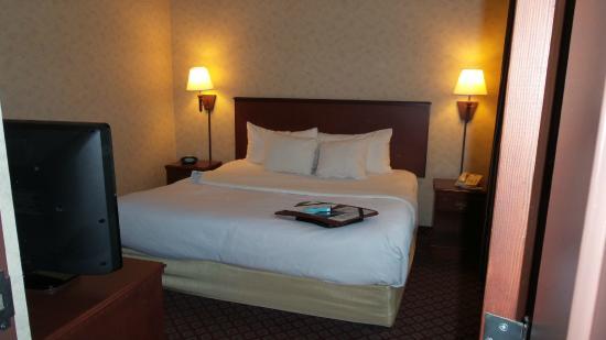 Broadway Hotel Aurora/Naperville: Standard 1 King Bed