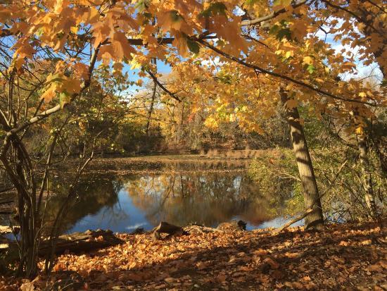 East Rock Park im Herbst und unglaublich schön. Wenn das Wetter mitspielt, sollte man unbedingt