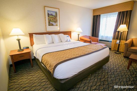 Baymont Inn & Suites Grand Rapids Airport: Standard 1 King Bed
