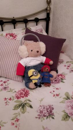 Farthings Guest House : Hamley & friends enjoying the Farthings