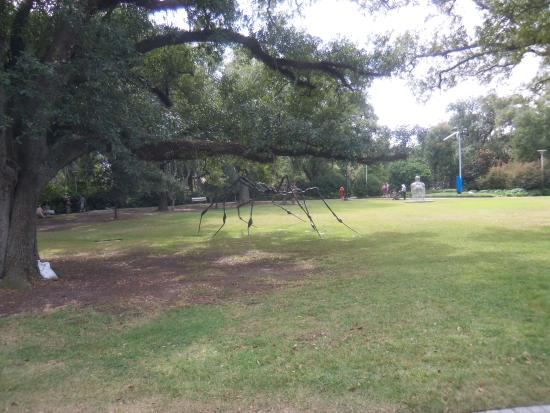 Picture Of New Orleans City Park, New