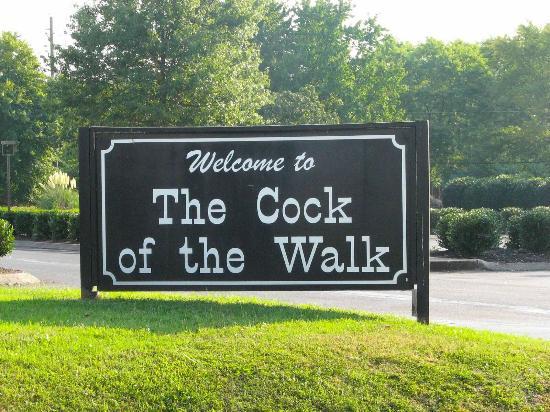 Cocks of the walk