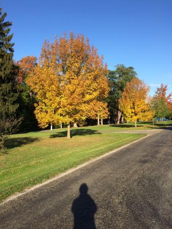 Westfield / Lake Erie KOA: Park across the street