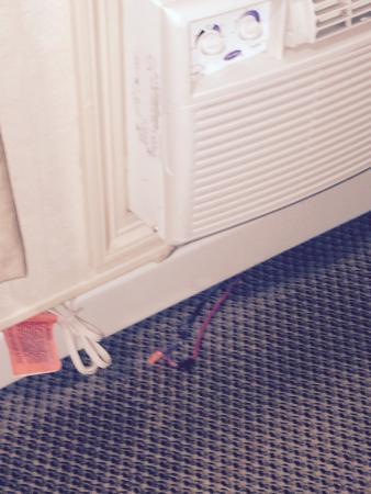 Sandman Hotel & Suites Regina: photo1.jpg