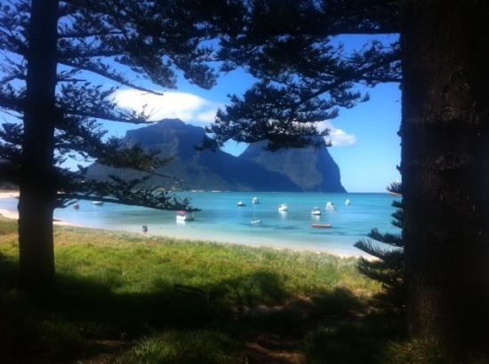 Lorhiti Apartments: Lord Howe Island