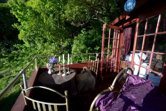 Tree Crop Farm: Tree House deck