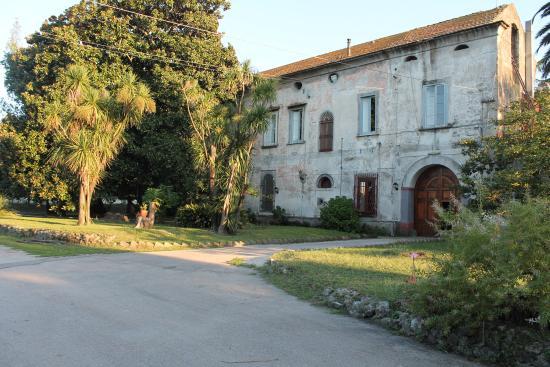 Fattoria Didattica Azienda Agricola Vesuviana Eredi Beneduce Ettore