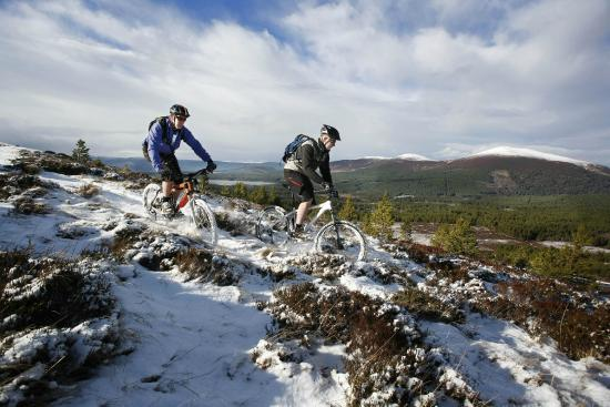 Dulnain Bridge, UK: Mountain Biking in The Cairngorms
