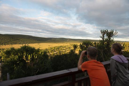 Addo Afrique Estate: Aussicht auf Addo Park von oben