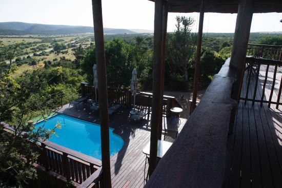 Addo Afrique Estate: Sicht auf Pool von oben