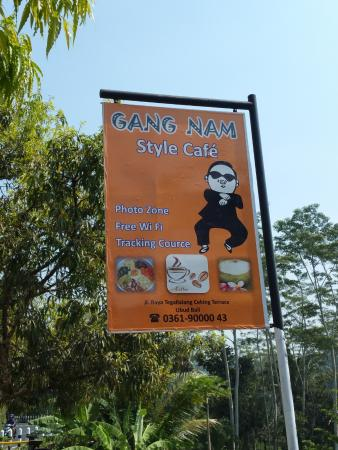 Agus Bali Private Tours: Gangnam Style Cafe?