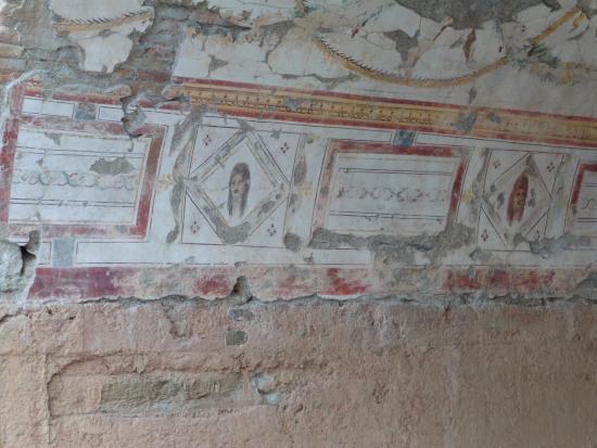 Ekol Travel - Day Tours : Terrace Houses, mosaic floors