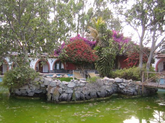 Hotel Majoro: Gartenanlage