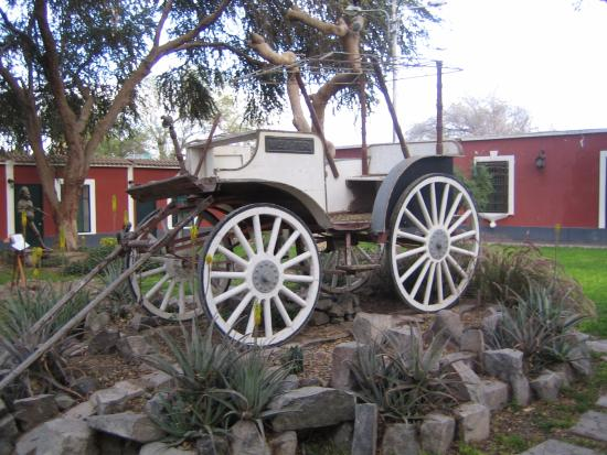 Hotel Majoro: Gartendekoration