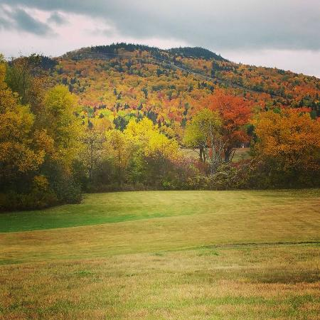 Stratton, ME: Fall in Maine