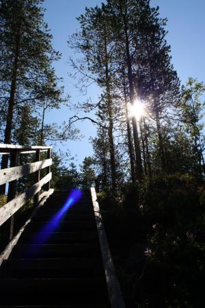 Koli National Park, Finland: Uuron kierros nature trail