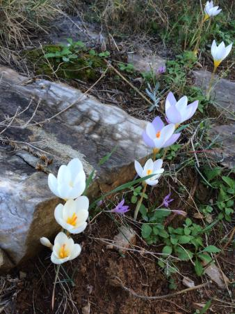 Porto Kayio, Hellas: στο δρόμο για το φάρο