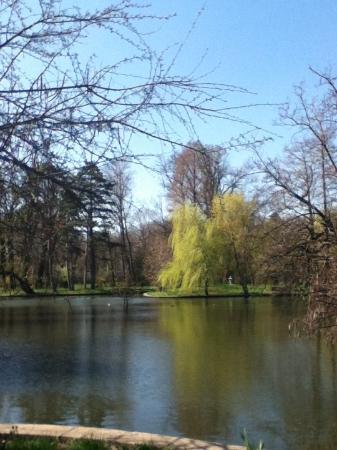The Botanical Garden (Gradina Botanica) : the lake