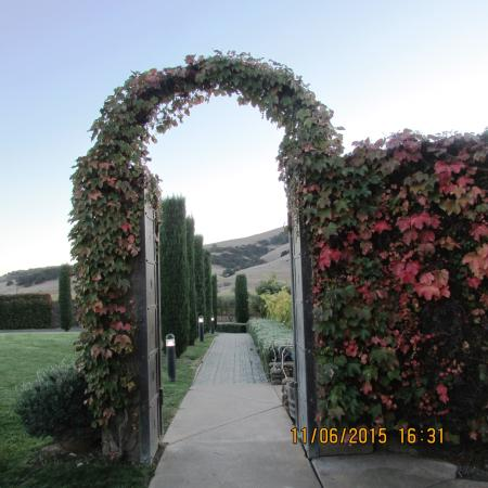 Viansa Winery and Italian Marketplace: Flora Archway