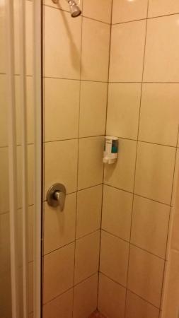 DeGalleria Hotel: Shower Area