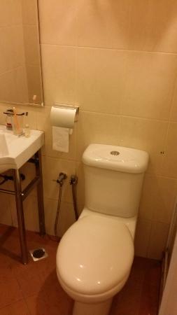 DeGalleria Hotel: Sink, Toilet Bowl