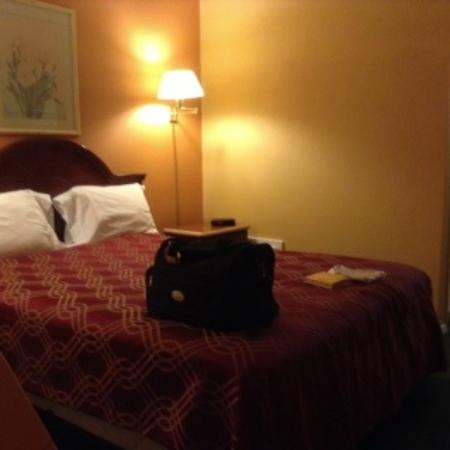 Econo Lodge: Queen bed