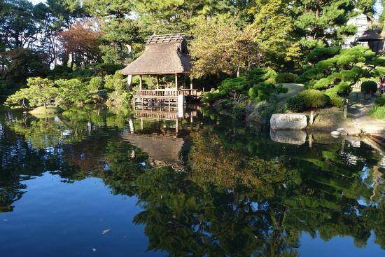 Shukkei-en Garden : Отражение