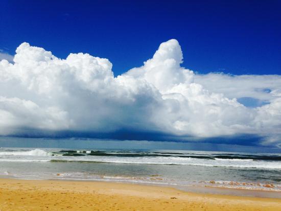 Sri Budhasa Ayurveda Resort: Bentota Beach, in front of the hotel
