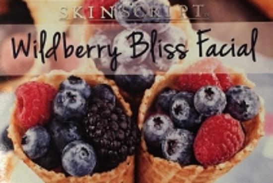 The Holistic Anti-Aging Spa: Wild Berry Bliss Facial