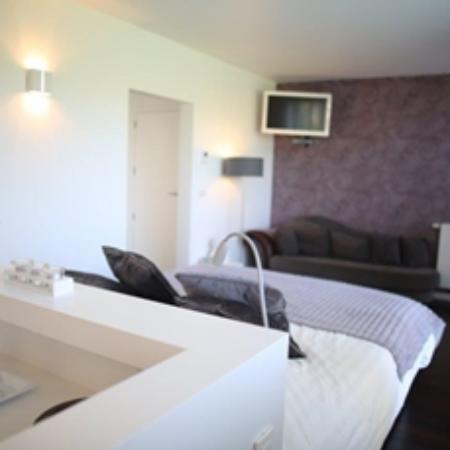 B&B Villa Tartine: Comfort kamer Fluweel