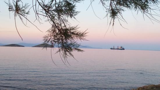 Azolimnos, Hellas: ΑΖΟΛΙΜΝΟΣ 2015