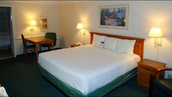 Motel 6 Knoxville: Room