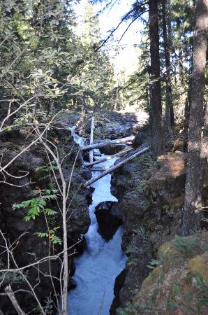 Prospect, OR: Rogue River Gorge View 3
