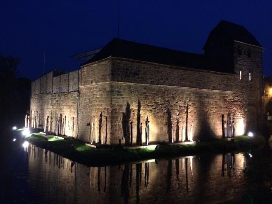 Burg Vilbel: Burg