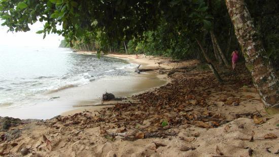 Nicoya, Κόστα Ρίκα: Playa Manzanillo