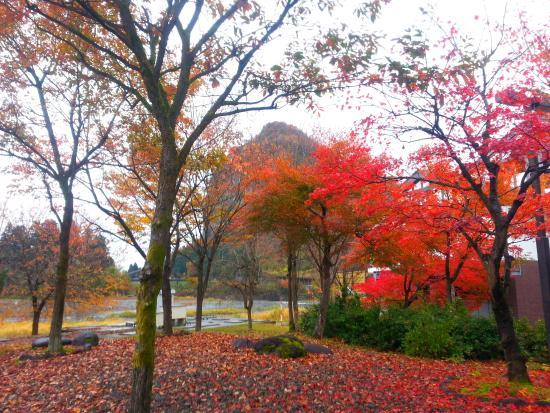 Iiyura-tei: 紅葉も楽しめます
