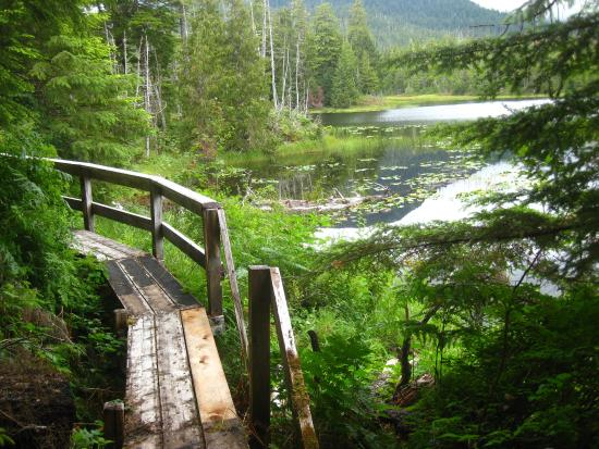 thorne bay dating site Zillow has 6 homes for sale in thorne bay ak matching wooded acres view listing photos, review sales history, and use our detailed real estate filters to find the perfect place.