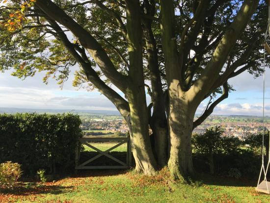 Dowfold House Bed & Breakfast: View from the garden