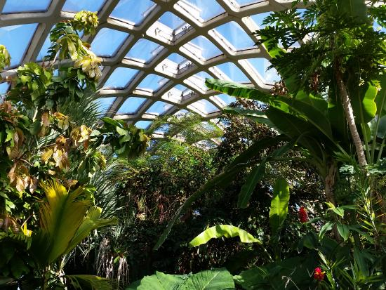 Denver Botanic Gardens: The Indoor Grounds