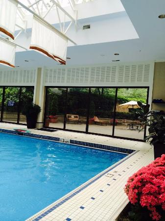 The indoor pool picture of sutton place hotel vancouver vancouver tripadvisor for Indoor swimming pools vancouver
