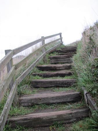 คูปวิลล์, วอชิงตัน: Stairs leading up the Ebey's Prairie Farmland